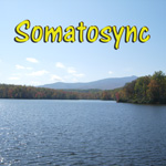 Somatosync Logo Don Shetterly